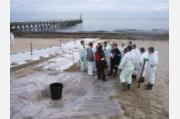 Pollutions marines - Formation des correspondants