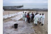 Pollutions marines - Formation des correspondants