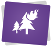 Feux de forêt_hover